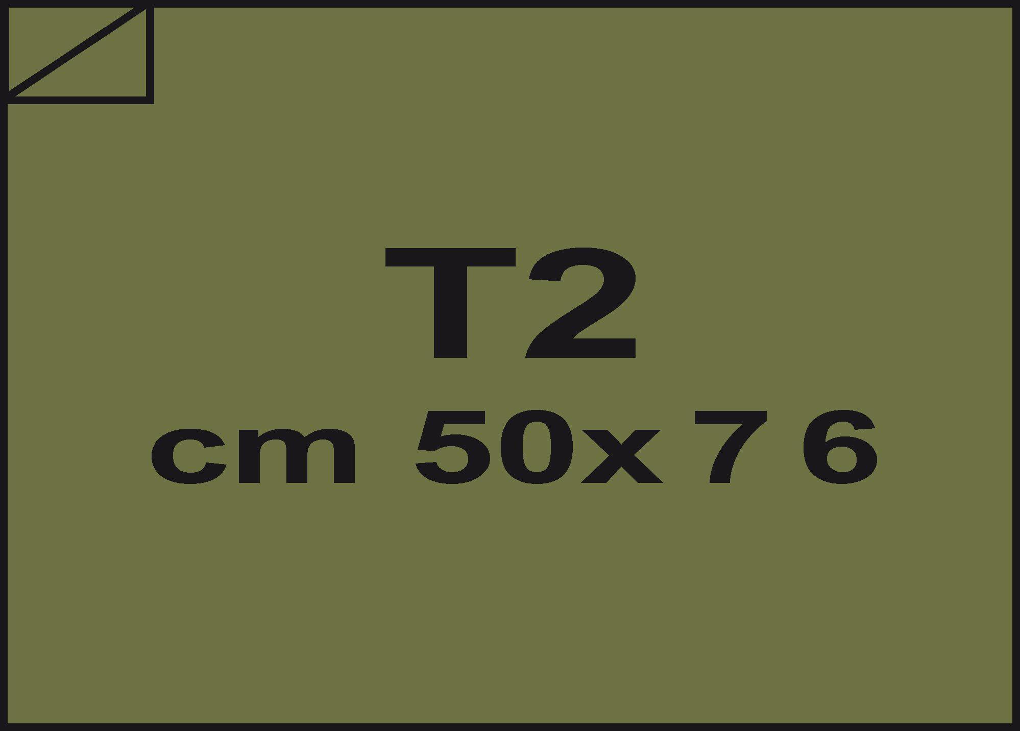 carta Carta velina Verde oliva 42, formato T2 (50x76cm), 18grammi x mq.