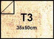carta Cartoncino Pergamena Fedrigoni bra307T3.