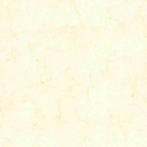 carta Cartoncino Pelle Elefante Zanders Bianco, formato A5 (14,8x21cm), 125grammi x mq.