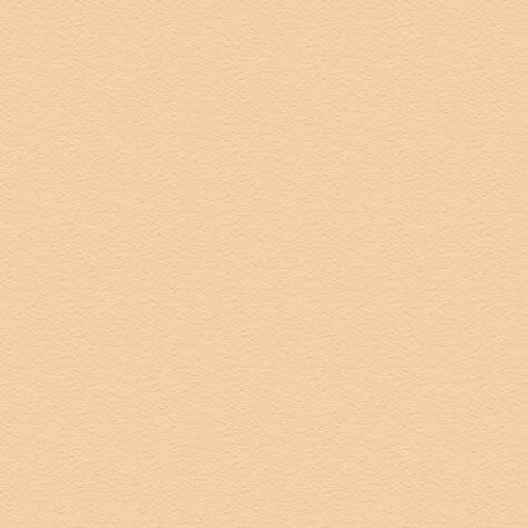 carta Cartoncino Modigliani Cordenons  camoscio, formato A4 (21x29,7cm), 145grammi x mq.