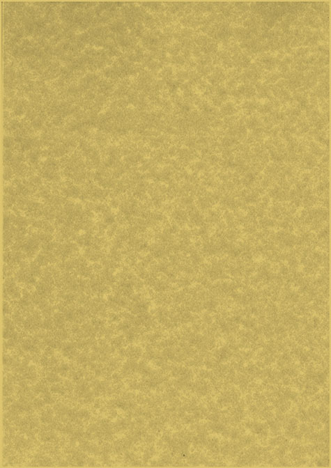 carta Carta personalizzata tinta unita -parchment gold- per stampanti laser & inkjet. Formato a4 (21x29,7 cm), 95gr x mq, personalizzata a tema.
