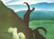 carta Carta personalizzata con soggetto -nature park- DEC306Sx100.