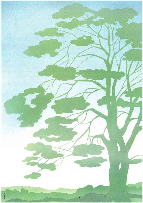 carta Carta personalizzata con soggetto -tree- per stampanti laser & inkjet. Formato a4 (21x29,7 cm), 95gr x mq, personalizzata a tema.