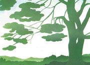 carta Carta personalizzata con soggetto -tree- DEC314Sx100.