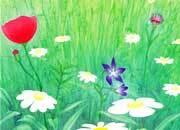 Soggetto. spring. carta 95gr. personalizzata a tema DEC550x100.