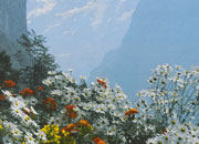 carta Carta personalizzata con soggetto -Alpine Flowers- per stampanti laser & inkjet. Formato a4 (21x29,7 cm), 95gr x mq, personalizzata a tema.