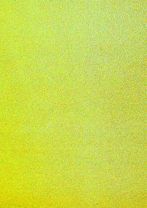 carta Carta personalizzata tinta unita -emerald- per stampanti laser & inkjet. Formato a4 (21x29,7 cm), 95gr x mq, personalizzata a tema.