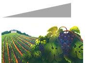 decadry Formato A4, vineyard, 135gr laser & inkjet. Piegati in 2, vineyard.