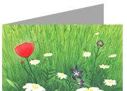 carta cartoncino piegato in 2 con soggetto -spring- per stampanti laser & inkjet. Foglio A4 piegabile in A5, 165gr x mq, personalizzata a tema.