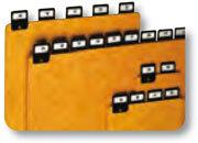 acco 25 divisori in cartoncino con tasti rivettati per schedario da tavolo A6 (orizzontale)  modello 3916 In dotazione fogli con stampa giorno, mese, alfabeto. Dimensioni:  105x150mm.