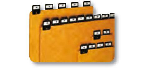 acco 25 divisori in cartoncino con tasti rivettati per schedario da tavolo A5 (verticale)  modello 34109 In dotazione fogli con stampa giorno, mese, alfabeto. Dimensioni:  210x148mm.