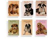 qpaperruggeri Scatola da 50 Maxi Quaderni quadr. a 4mm Puppies formato A4, legatura: Punto metallico, foliazione: 21 fogli, carta da 80gr, quadretti 4mm.
