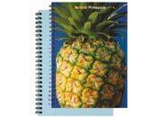 qpaperruggeri Natural Fruit Pineapple - Ananas - (carta azzurra / blue paper) formato A4, legatura: W.O. lato lungo, foliazione: 70 fogli, carta da 80gr, quadretti 5mm.